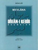 Divan-ı Kebir - Seçmeler (4 cilt takım)